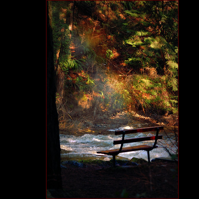 red bench . . .