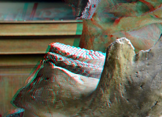 Jaw with Molars of Mastodon 3D