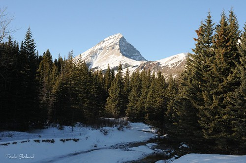 winter mountains rockies scenery alberta