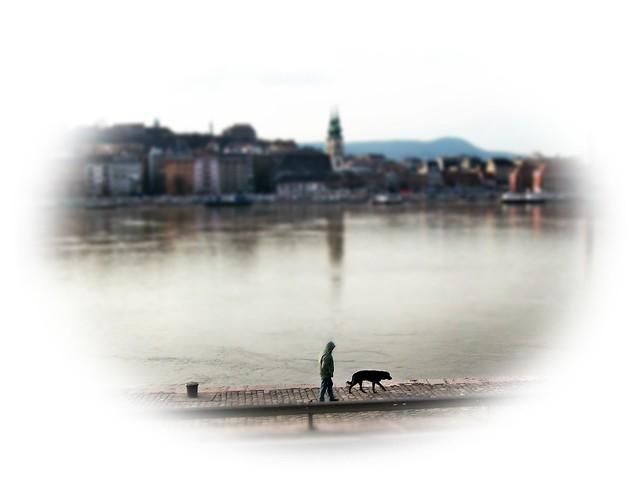 Walk in the Danube with the silence ...Alkonyi csendes séta a Duna parton