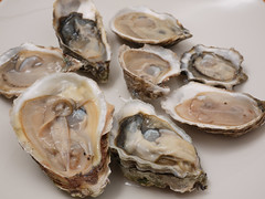水, 2011-02-23 19:36 - Oyster