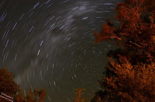 Star Trail 2   by Dave vZ