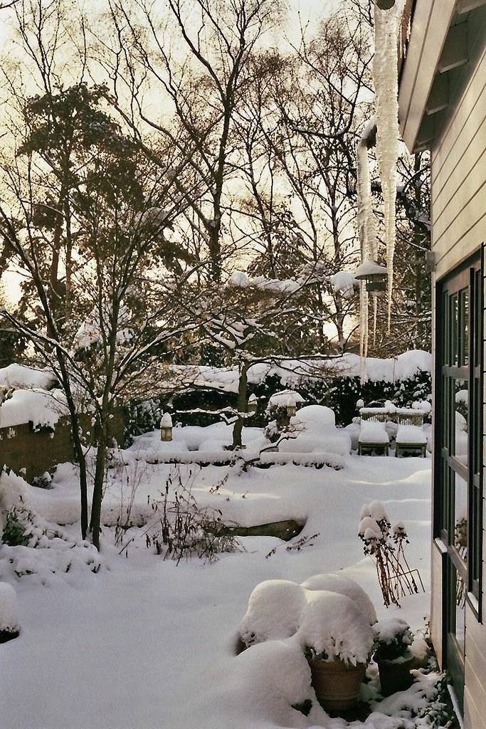 snow by Jannik Hildebrand