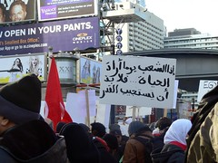 egyptian solidarity rally 8