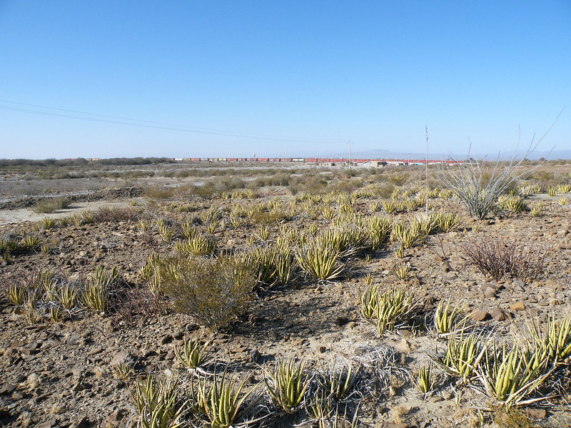 Estacion Marte, Coahuila