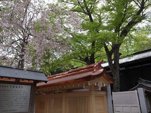 <p>c)今日の春色、鮮やか</p>