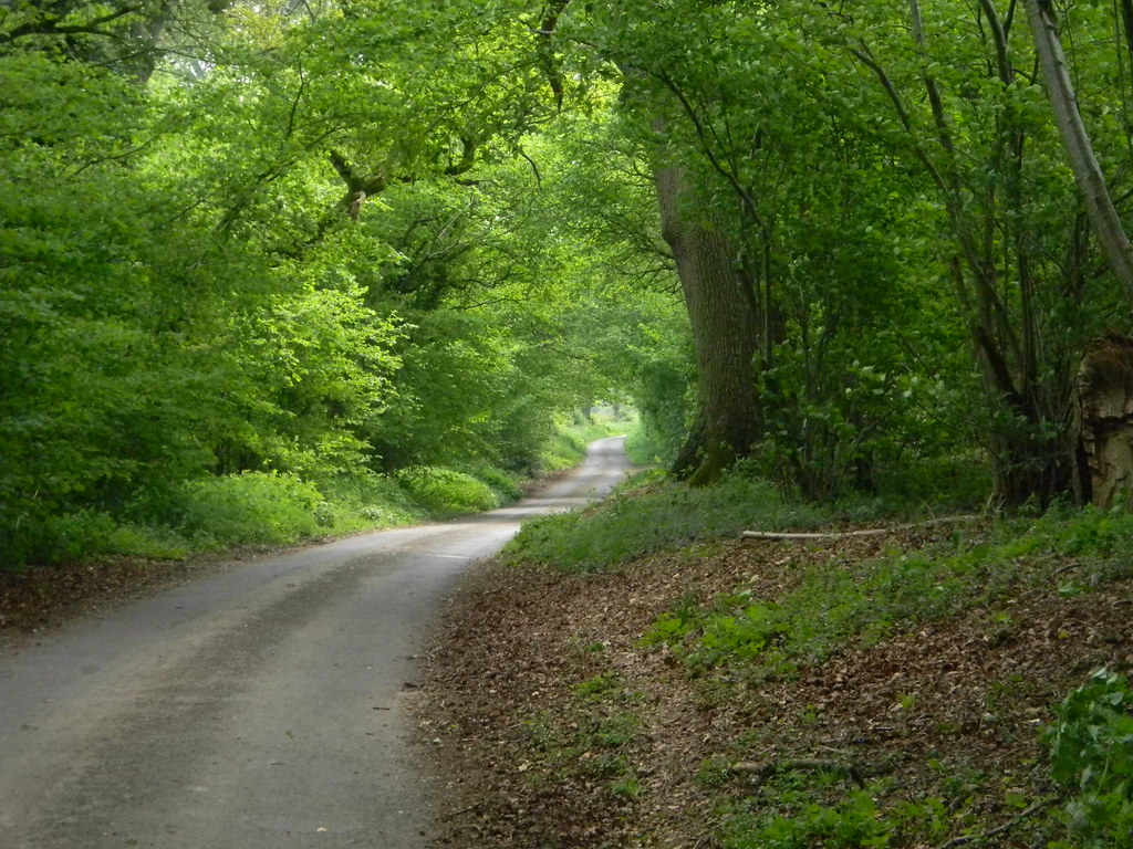 Road from Jane Austens House to Steventon Church Overton Circular