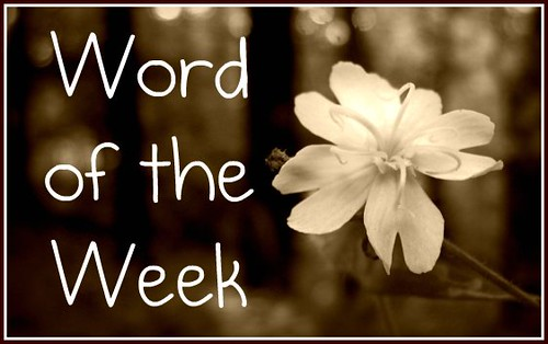 Word of the Week | by theladypastor
