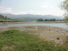 lac de la gruyere