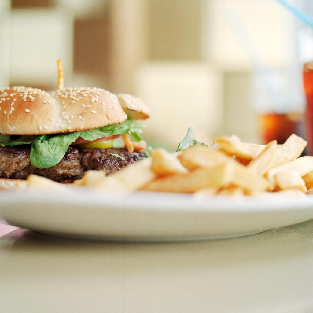 Venison-Wapiti-Bison Burger by christian.senger