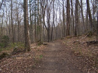 Trail Up Kane Mountain | by andyarthur