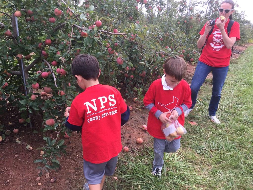 2016 10 Nps Kindergarten Field Trip 10 06 2016 Nps Kinderg Flickr