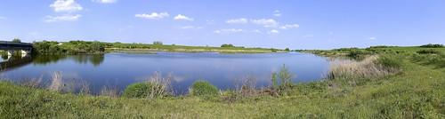 Dorney Wetlands | by ᚛Tilly Mint ᚜