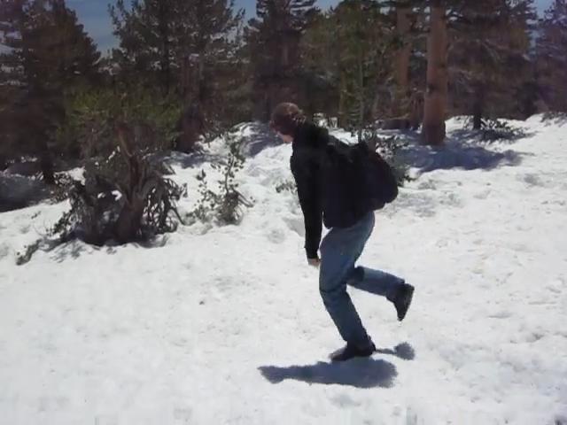 325_Snow-on-Miller-Ridge