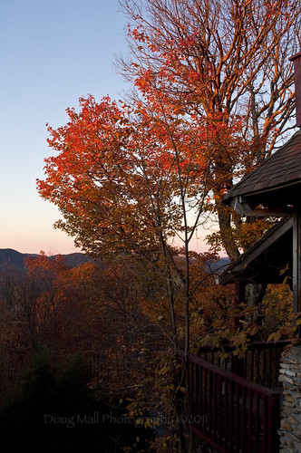 morning fall nature leaves sunrise nc northcarolina blueridgeparkway 2010 nikond5000 dougmallnikond5000 dougmall