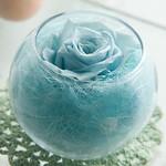ローズボール/スカイブルー(Rose Bowl /Sky Blue):flower arrangement