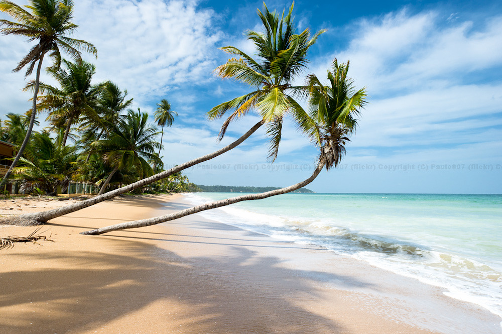 Mayaro Beach Trinidad Mayaro Beach In Trinidad A Great C