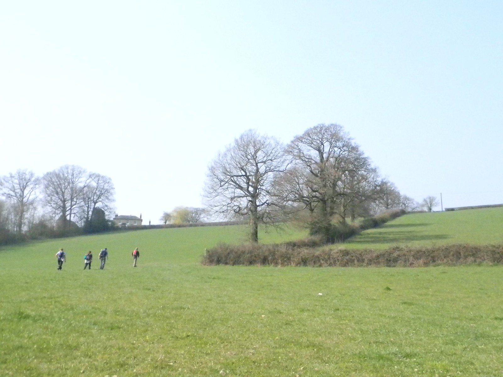 across a field Sevenoaks to Westerham