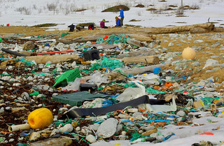Marine litter. Extremely littered beach in northern Norway. | by Snemann