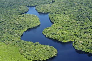 Amazon11 | by CIAT International Center for Tropical Agriculture