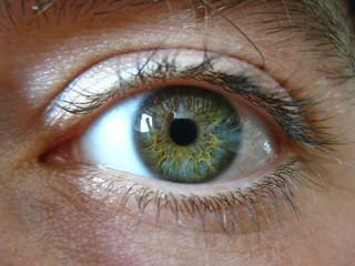 Antarctica: My Eye Ball | by eliduke