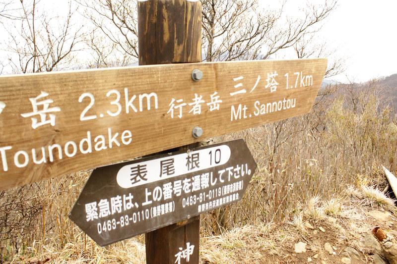 20110429_塔ノ岳(表尾根)_0029