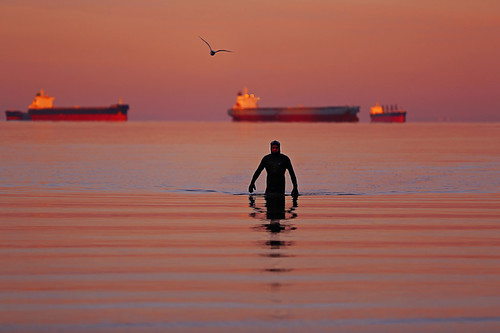 emergingfromthesea anearlymorningswimmer swimmer englishbay vancouver britishcolumbia canada sunrise ocean ship water reflection canon5dmarkiii 70200mmf28lisii dawn lifeng travel 蛙人 waves seagull tankers