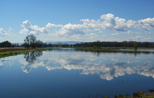 county washington wildlife national clark refuge ridgefield a350