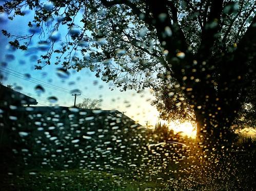 rain sunrise suburbs iphoneography