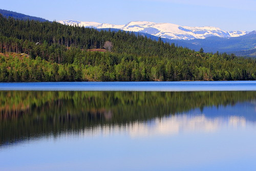 blue trees panorama mountain lake snow mountains reflection green nature norway reflections landscape norge view norwegian fjord sight beitostølen treee jotunheimen rv7 heggenes heggefjorden