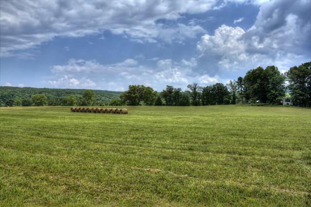 Field, Cumberland Co, TN