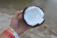 Fresh Coconut