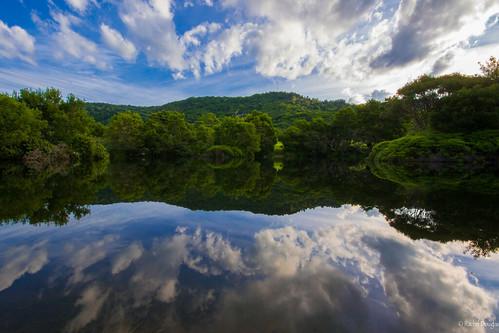 sky reflection nature clouds pond nikon australia queensland goldcoast springbrook goldcoasthinterland springbrooknationalpark nikond5200 racheljoanne visitgoldcoast