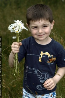 popeye has a long-stem daisy bouquet for his mom - MG 5176.JPG | by sean dreilinger