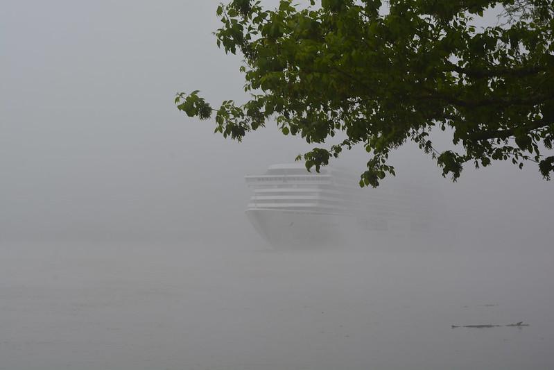 Départ du MS CRYSTAL SERENITY sous la brume - 21 avril 2014