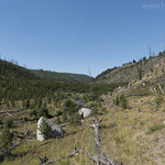 Tower Creek Trail