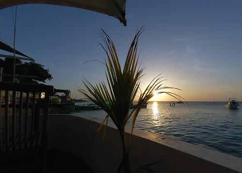 sunset sea silhouette caribbean bonaire ©allrightsreserved