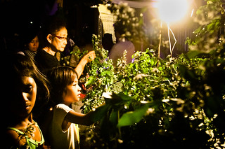 12/Lake flowers for Mary/By Kimmy Baraoidan and Chris Quintana | by Filipina Storytellers