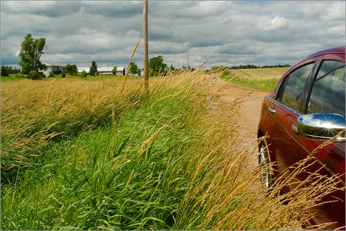 road car raw michigan wheat 200 grasses chrysler mulliken countryroad joeldinda 1v1