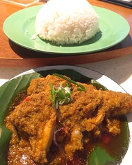 Rendang chicken rice from Curry time in Changi Airport