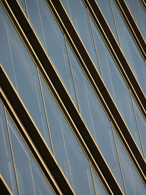 Gold lines