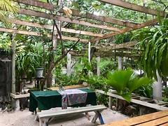 Tortola, BVI, Caribbean