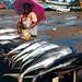 Přístav v Negombu, foto: Pavel Bašta