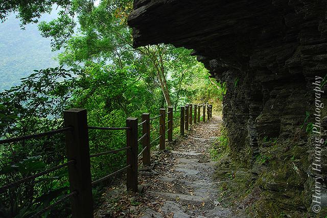 3DSC_0701--(Walami) National Trail, Yushan National Park, Hualien, Taiwan 瓦拉米步道-八通關古道-玉山國家公園-花蓮縣