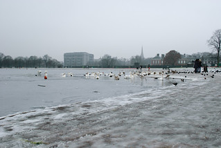 Lake in Kensington Gardens | by Benoit Dupont