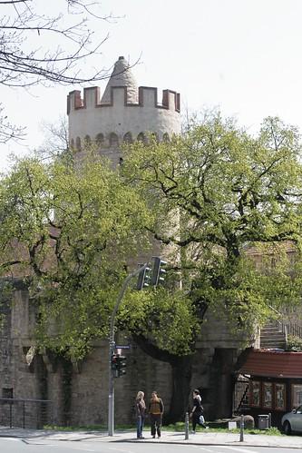 Johannes Turm