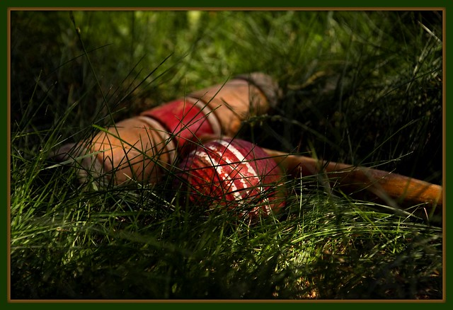 Croquet anyone?