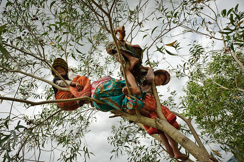 Cambodian Girls Up in a Tree | by goingslowly