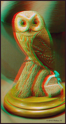 sculpture detail bird art nature beautiful stereoscopic 3d md gallery brian fineart maryland anaglyph carving indoors stereo owl wallace inside chacha expensive depth easton skill decoy stereoscopy stereographic ewf artpiece brianwallace stereoimage eastonwaterfowlfestival stereopicture