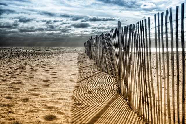 storm fence on the beach